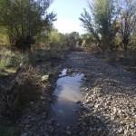 3 (Carril bici y camino destrozado en ribera del Rio Gallego)