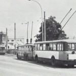 avenida 1975