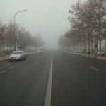 en la niebla (Buenos dias en la niebla !)