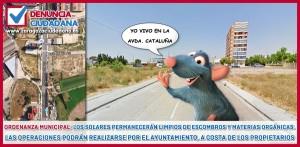 zgz ciudadana